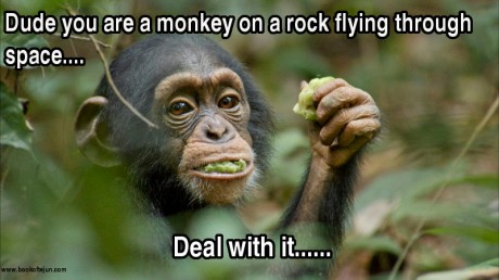 monkey on a rock flying through space